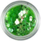 Világoszöld konfettik - hatszögek aquaelements